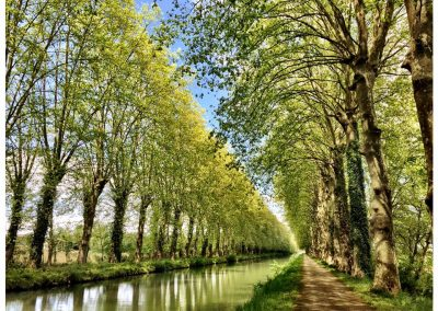 The Canal in Damazan